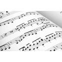 Leguaje Musical